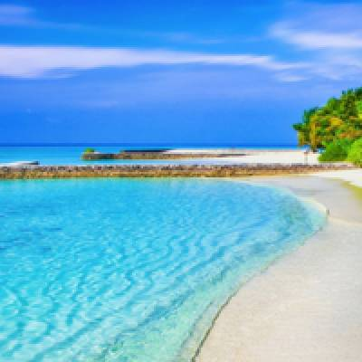 Tropische Attracties voor ieder zomer evenement