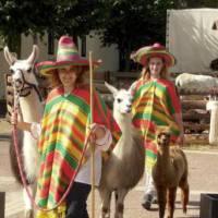 Mexicaanse Kinderboerderij