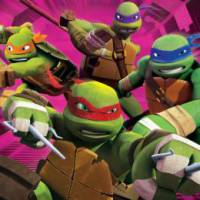 Meet & Greet de Turtles