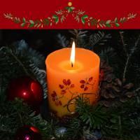 Kids Workshop - Kerststukjes maken