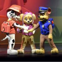 Paw Patrol Mini Show