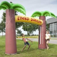 Limbo Dansen huren of inhuren