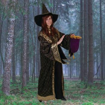 De Toverende Tovenaar en zijn Leerling Boeken of Inhuren?