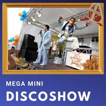 Mega Mini Discoshow voor Sinterklaasfeest inhuren of boeken?