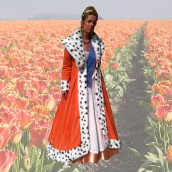 Oranje Koningin Fluit Boeken of Inhuren?