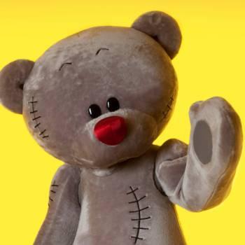 Meet & Greet Mega Teddybeer inhuren of boeken