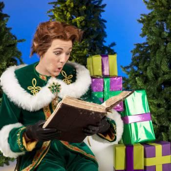 De Kerstelf vertelt boeken of inhuren