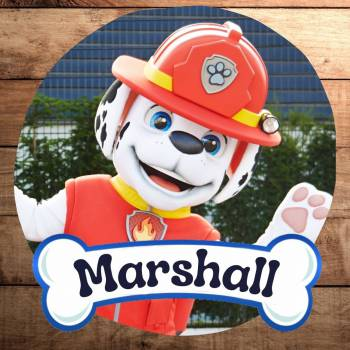 Meet & Greet Marshall - Paw Patrol Boeken of Inhuren?