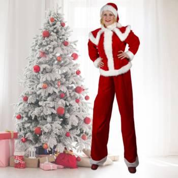 2 Steltlopende Kerstfiguren Boeken of Inhuren?