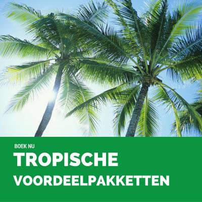 Voordeelpakketten - Tropische Attracties - Juli & Augustus