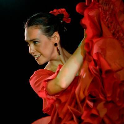 Los del Sol - Spaans Themafeest