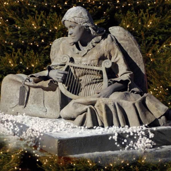 Gevallen Engel - Levend Standbeeld inhuren of boeken? | SintenKerst