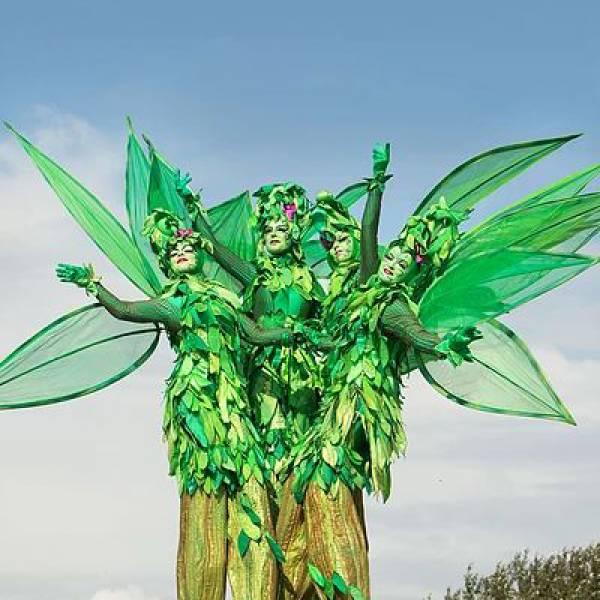 Hoge Bomen - Steltloop Act boeken of huren? | JB Productions