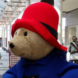 Meet & Greet Beertje Paddington