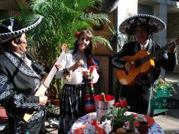 Mexicaans Themafeest boeken of inhuren | JB Productions