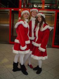 Kerstvrouwen Kostuum