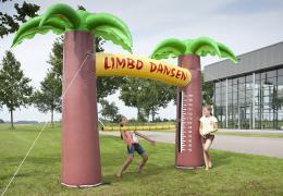 Limbo Dansen huren of inhuren   Artiestenbureau JB Productions