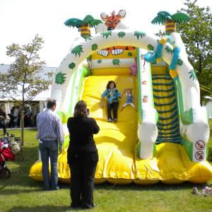 Foto van Tropical Slide   Partyspecialist.nl