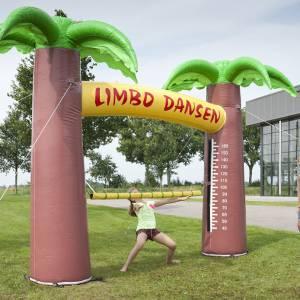 Foto van Opblaasbaar Limbo Dansen | Partyspecialist.nl