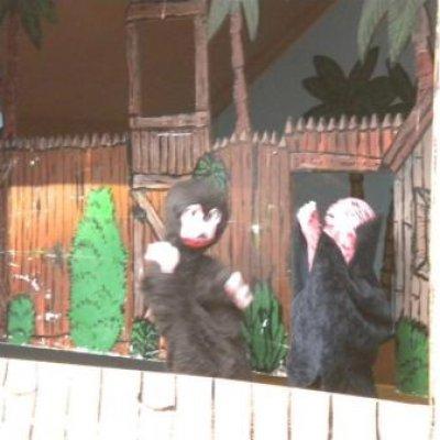 Fotoalbum van Poppentheater Oeloeboeloe | Kindershows.nl