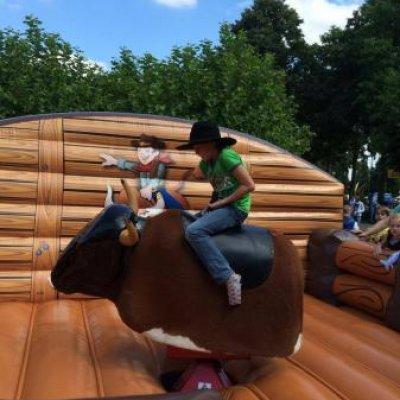 Fotoalbum van Rodeostier | Kindershows.nl