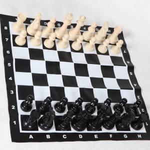 Groot schaakspel huren Partyspecialist