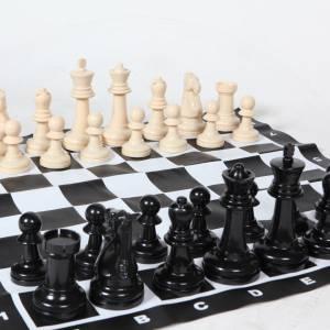 Groot schaakspel inhuren Partyspecialist