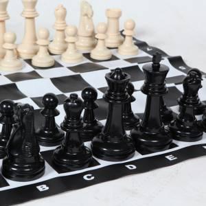 Groot schaakspel Partyspecialist