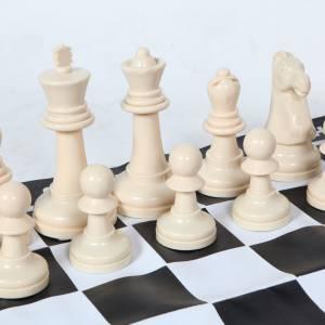 Groot schaakspel huren Hoeksche Waard