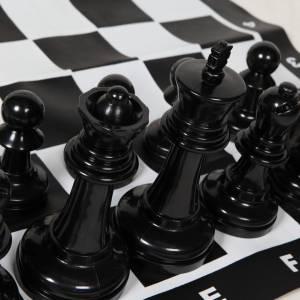 Groot schaakspel huren Zuid Holland