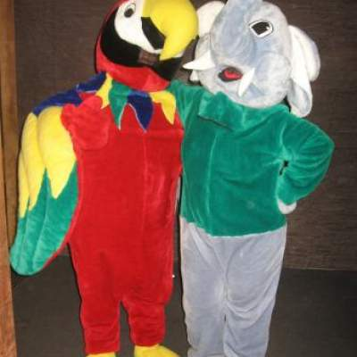 Foto van Papegaai en Olifant met hun Verzorger | JB Productions