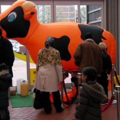 Foto van Limonade Ranja Koe | Attractiepret.nl