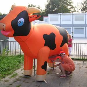 Foto van Ranja Koe - Oranje   Partyspecialist.nl
