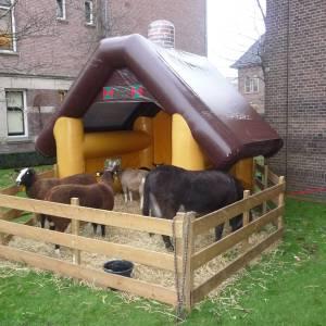 Mini Kinderboerderij inhuren
