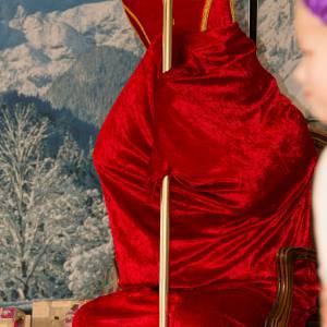 Sinterklaasshow Het Spaanse Sinterklaasfeest inhuren