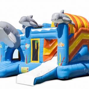 Speel- en Springkussen De Dolfijn inhuren