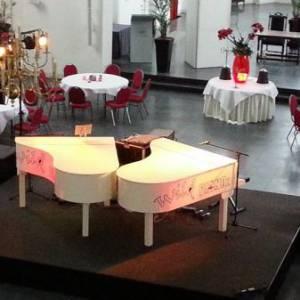 Wild Pianoz Dueling Pianoshow boeken?
