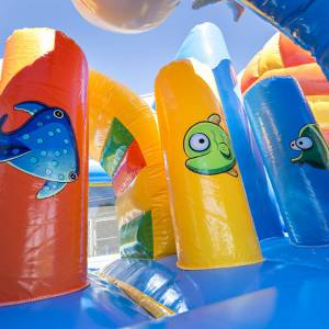 Foto van Springkussen en Multiplay Dolfijn   Partyspecialist.nl