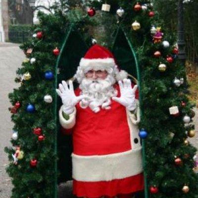 Foto van Magic Christmas Tree - Unieke Kerstact | Artiestenbureau SintenKerst.nl