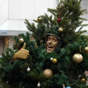 Levende Kerstboompje! inhuren?