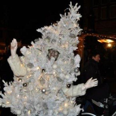 Fotoalbum van het levende kerstboompje sint en kerst - Fotos van levende ...