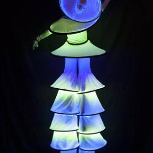Steltloopact - Circle Mania LED boeken?