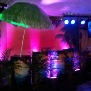 De Tropical Discoshow boeken?