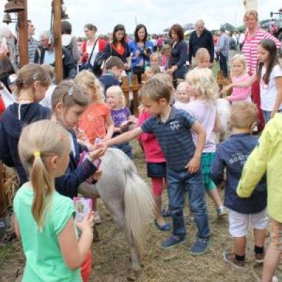 Mini Horse World boeken of huren