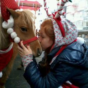 Mini Horse World - Kerst thema boeken?