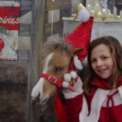 Mini Horse World - Kerst thema inhuren?