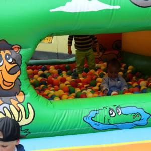 Foto van Springkussen of Ballenbad Junglebad | Partyspecialist.nl