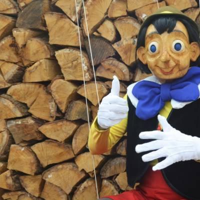 Pinokkio en Gepetto - Straattheater boeken?