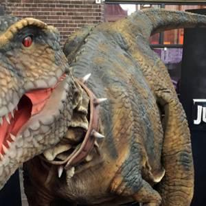 Dino Experience T-REX inhuren