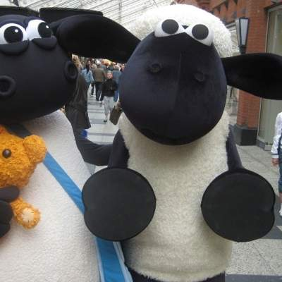 Schaap & Timmy Meet & Greet Shaun huren